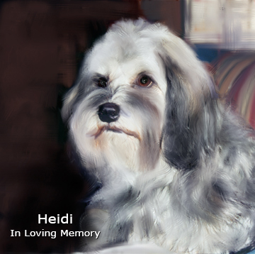 In Loving Memory of Heidi
