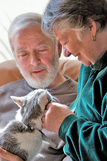 Couple with their family cat